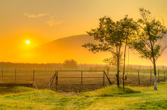 Stable on golden morning light - HDR Royalty Free Stock Photos