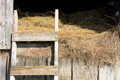 Stable hay Stock Photo