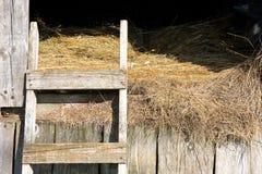Stable Hay Stock Photo