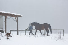 Stableman with horse in fog Royalty Free Stock Photography