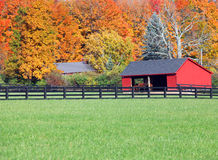 Stables in fall. Beautiful fall background to horses in a stable Royalty Free Stock Image