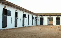 Stables with horses. Royalty Free Stock Image