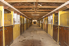 Spanish Horse Stables. An image of stables from Murcia in Spain with riding gear hanging outside some of the stalls where the horses are stabled every night Royalty Free Stock Photography
