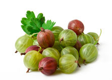 Stachelbeerefruchtnahaufnahme Lizenzfreies Stockfoto