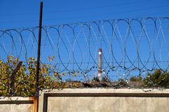 Stacheldraht auf einem konkreten Zaun Lizenzfreies Stockbild