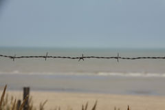 Stacheldraht auf einem Strand in Frankreich Stockfoto