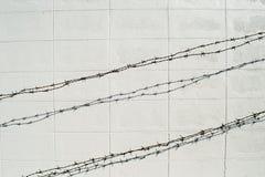 Stacheldraht auf weißer Blockwand Stockbild