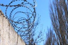 Stacheldraht auf Zaun mit blauem Himmel, das Konzept des Gef?ngnisses, Rettung, Kopienraum lizenzfreie stockfotografie
