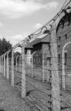 Stacheldraht in Auschwitz Stockfotografie