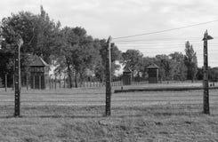 Stacheldraht in Auschwitz Birkenau Lizenzfreie Stockfotografie