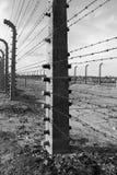 Stacheldraht in Auschwitz Birkenau Lizenzfreie Stockbilder