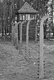 Stacheldraht in Auschwitz Birkenau Stockfotos