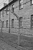 Stacheldraht am Auschwitz-Konzentrationslager Lizenzfreie Stockbilder