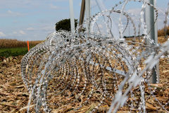 Stacheldraht, der auf die Ungarisch-Kroat-Grenze installiert stockbilder