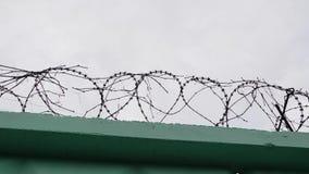 Stacheldraht im Gefängnis Draht mit Barbe Grüner Zaun mit Stacheldraht gegen grauen Himmel stock footage