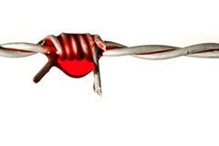 Stacheldraht mit Blut Stockfotos