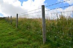 Stacheldrahtzaun entlang Wiesenfeldern Stockfotografie