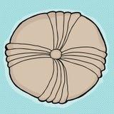 Stachelhäuter-Fossil über Blau Lizenzfreies Stockfoto