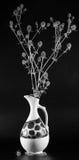 Stacheliger Schwarzweiss-Blumenstrauß. Stockfoto