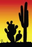 Stacheliges schwarzes Schattenbild des Kaktus Lizenzfreie Stockfotografie