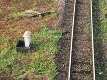Stacja kolejowa i linia kolejowa Obrazy Royalty Free
