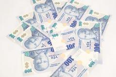 Stack of 100 YTL bills. Stack of 100 lira bills stock photos
