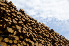Stack. Of logs and a sky with white clouds Royalty Free Stock Image