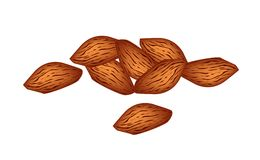 A Stack of Almonds on White Background Stock Photography