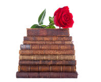 Stack of antique books and red rose. Stack of nine antique books, isolated white background Royalty Free Stock Photo