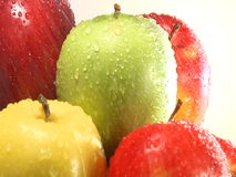 Stack of apples stock video