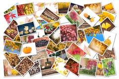 Stack of autumnal photos Royalty Free Stock Photos