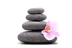 Stack of balanced stones and a pink flower Royalty Free Stock Photos