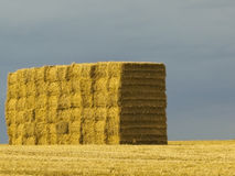 Stack of bales on hilltop Stock Images