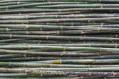 Stack of bamboo pattern Royalty Free Stock Photos