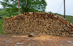 Stack of beech firewood Stock Image