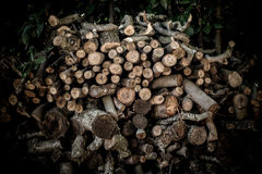 Stack of big dry firewood log Royalty Free Stock Image