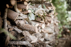 Stack of big dry firewood log Royalty Free Stock Photography