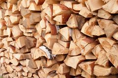 A stack of birch wood Royalty Free Stock Photo