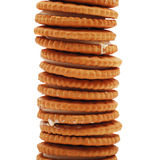 Stack of biscuits Royalty Free Stock Photo
