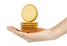 Stack of biscuits in woman hand isolated on white Royalty Free Stock Photo