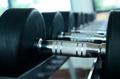 Stack of black dumbbells. Stack of black dumbells on weight holder royalty free stock photo