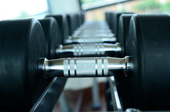 Stack of black dumbbells. Select focus royalty free stock photo