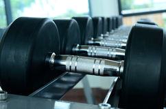 Stack of black dumbbells. On weight holder royalty free stock photography