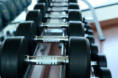 Stack of black dumbbells. On weight holder royalty free stock photo