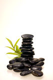 Stack of black zen stones with a bamboo plant. Stack of balance black zen stones with a bamboo plant royalty free stock photo