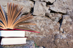 Stack of book and Open hardback book on blurred nature landscape backdrop. Copy space, back to school. Education background. Stack of book and Open hardback stock image