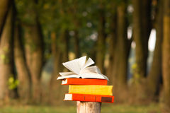 Stack of book and Open hardback book on blurred nature landscape backdrop. Copy space, back to school. Education background. Stock Images