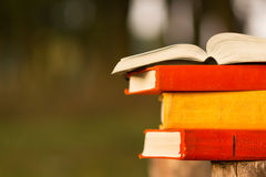 Stack of book and Open hardback book on blurred nature landscape backdrop. Copy space, back to school. Education background. Stock Photo