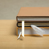 Stack of book royalty free stock photography