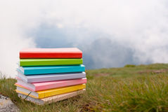 Stack of the books royalty free stock images